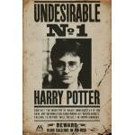 Plakat Harry Potter - Undesirable No 1