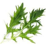 Wkład nasienny Lingot warzywa liściowe kapusta Mizuna